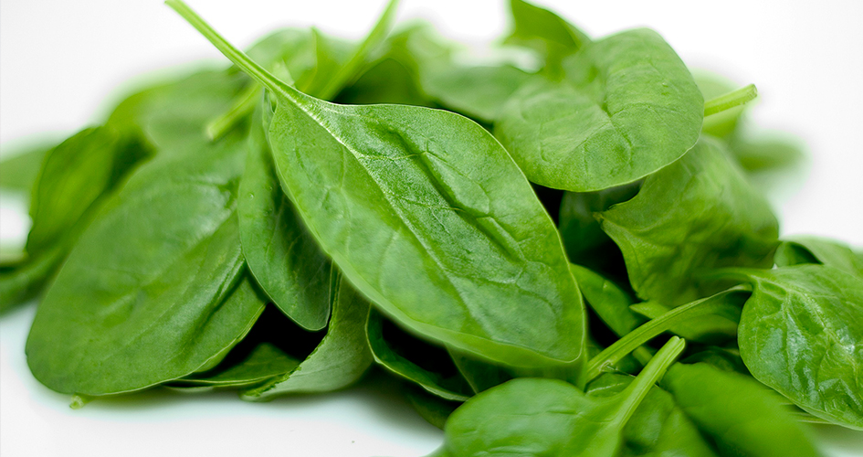spinach_reebee